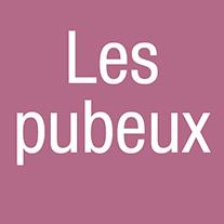 vignettes_etc_pubeux_2